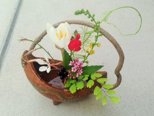 るこう草の蔓、玉すだれ (2)