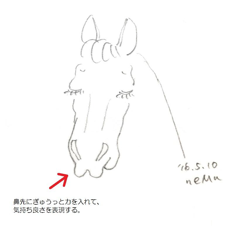 グルーミング時に、鼻先を尖らせる馬